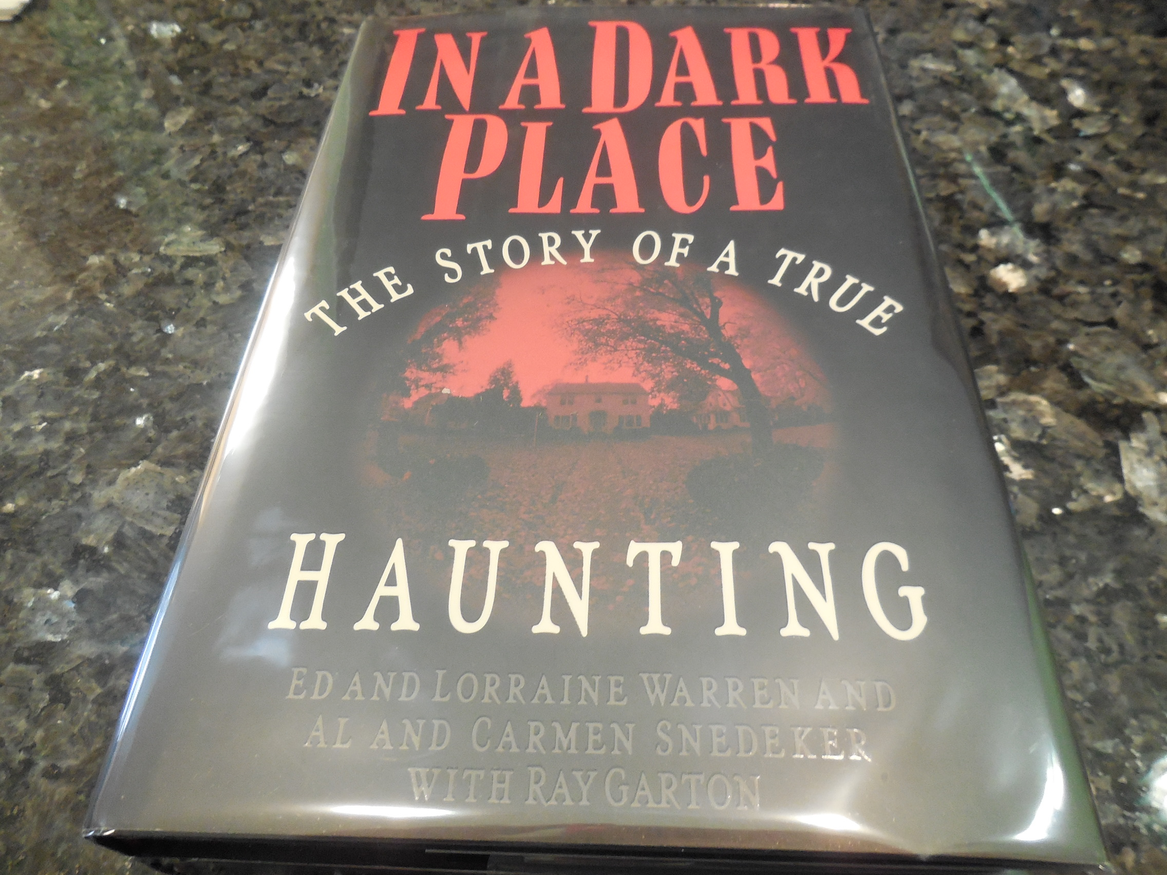 Image for In a Dark Place: The Story of a True Haunting