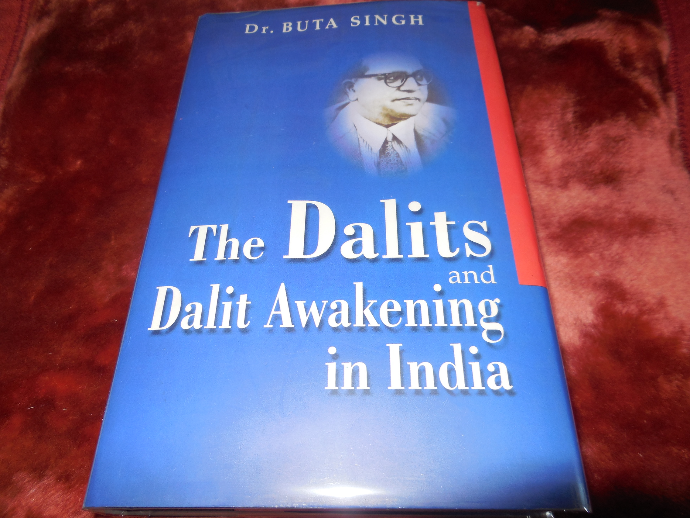 Image for The Dalits and Dalit Awakening in India