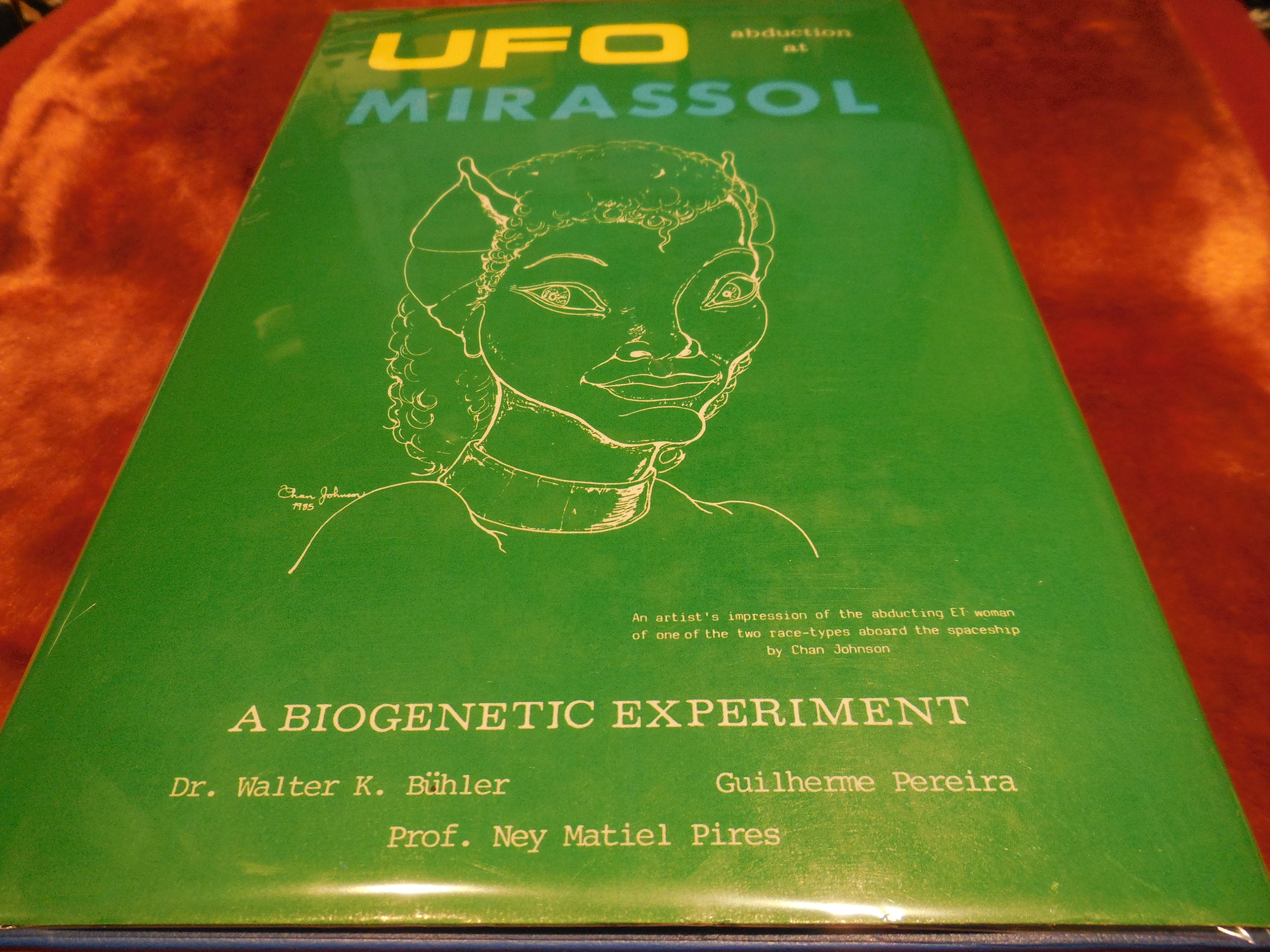 Image for Ufo Abduction at Mirassol: A Biogenetic Experiment (Fact Books)