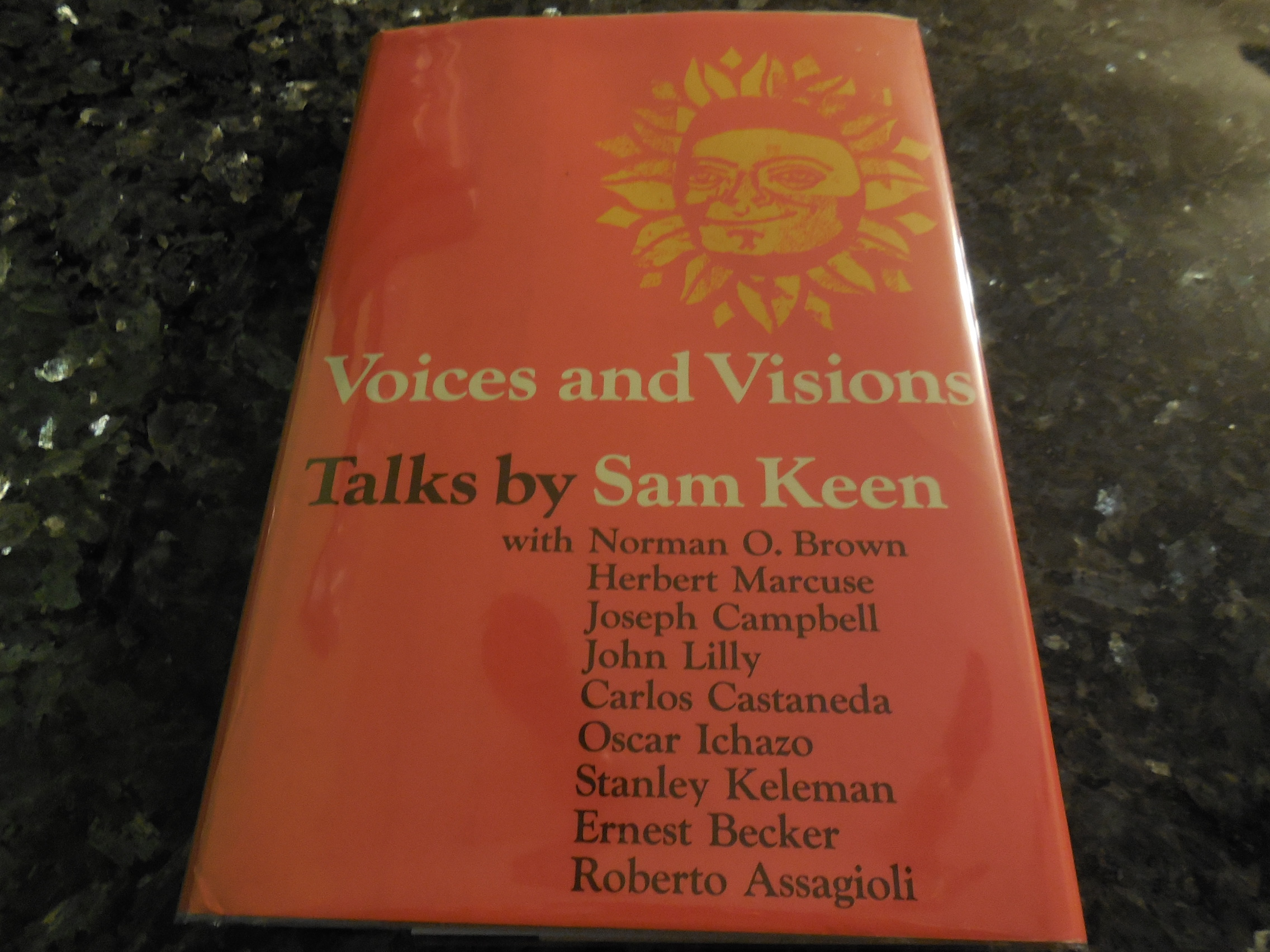 Image for Voices and visions