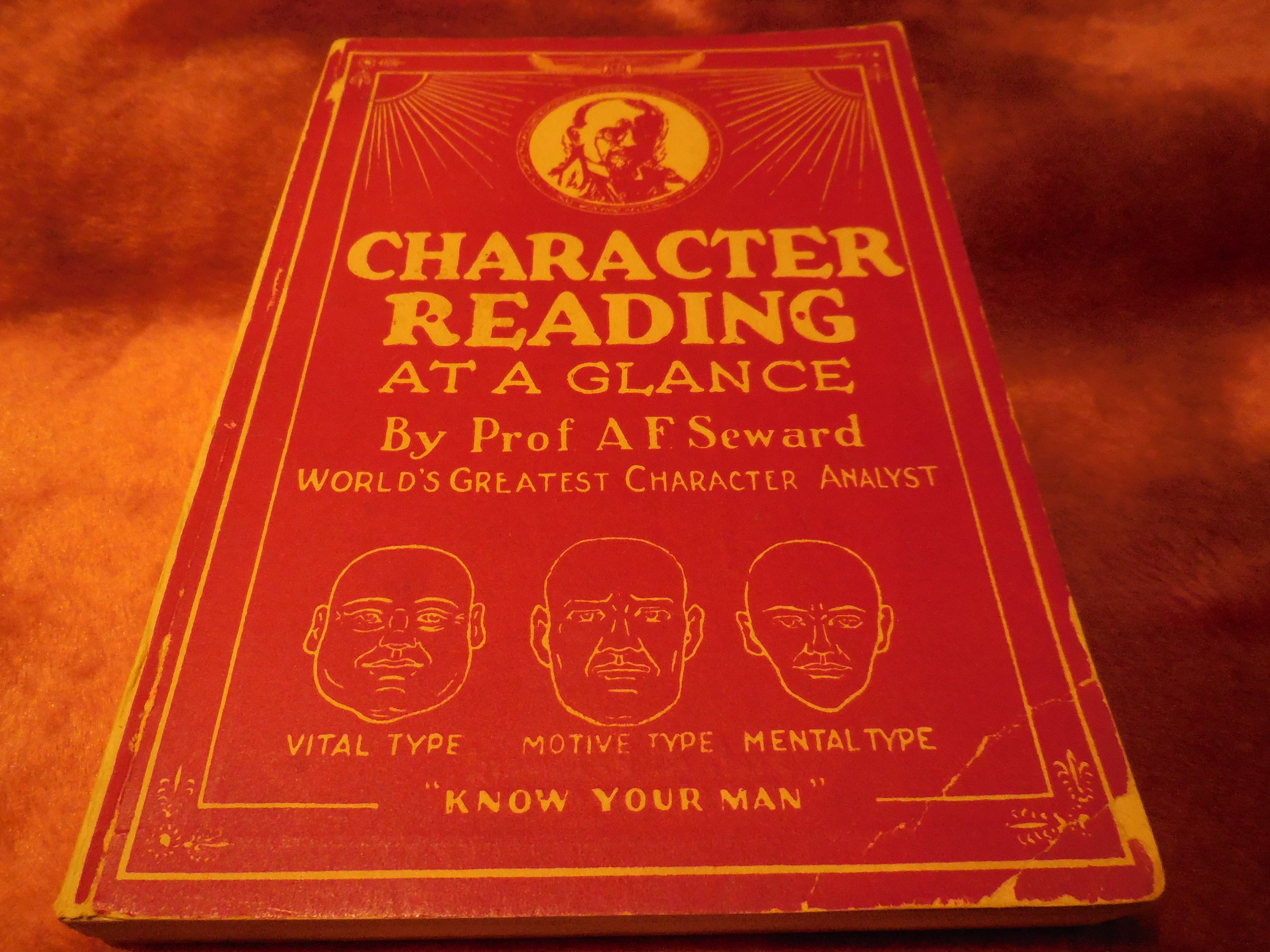 Image for Character Reading at a Glance