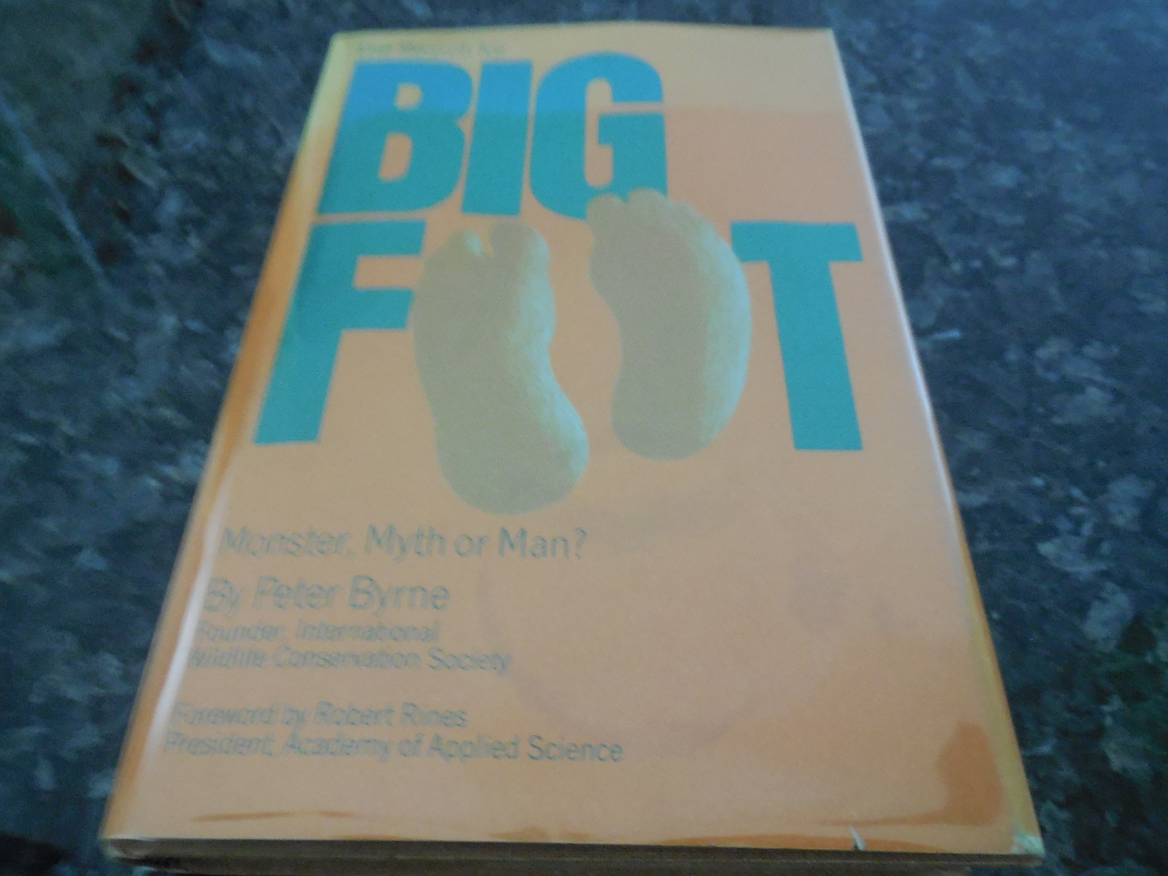 Image for The Search for Big Foot: Monster, Myth or Man?