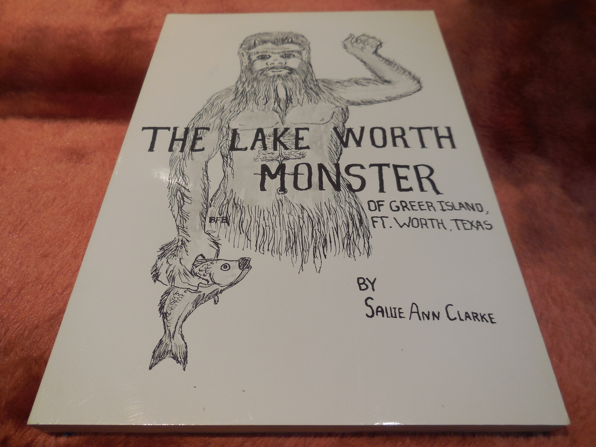 Image for The Lake Worth Monster of Greer Island
