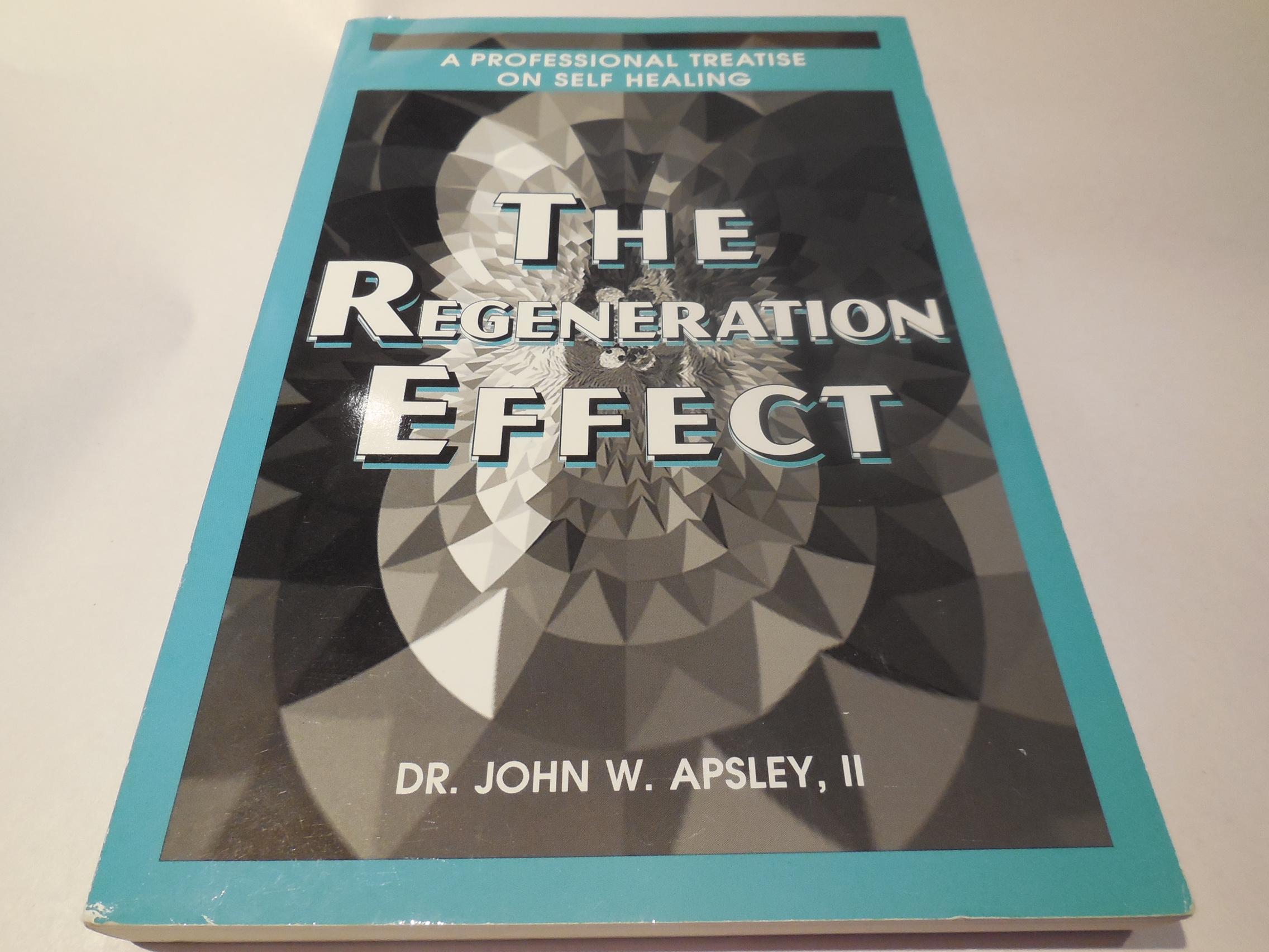 Image for The Regeneration Effect - A Professional Treatise on Self-Healing