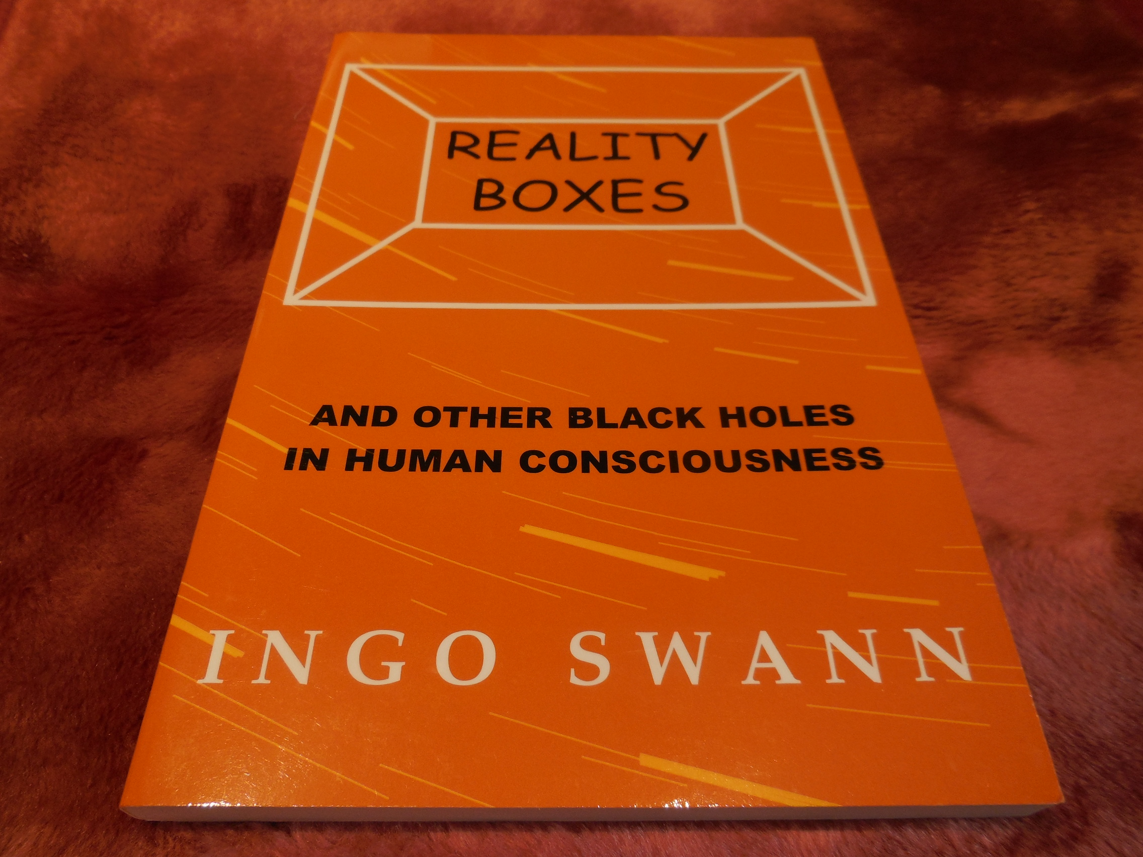Image for Reality Boxes and Other Black Holes in Human Consciousness