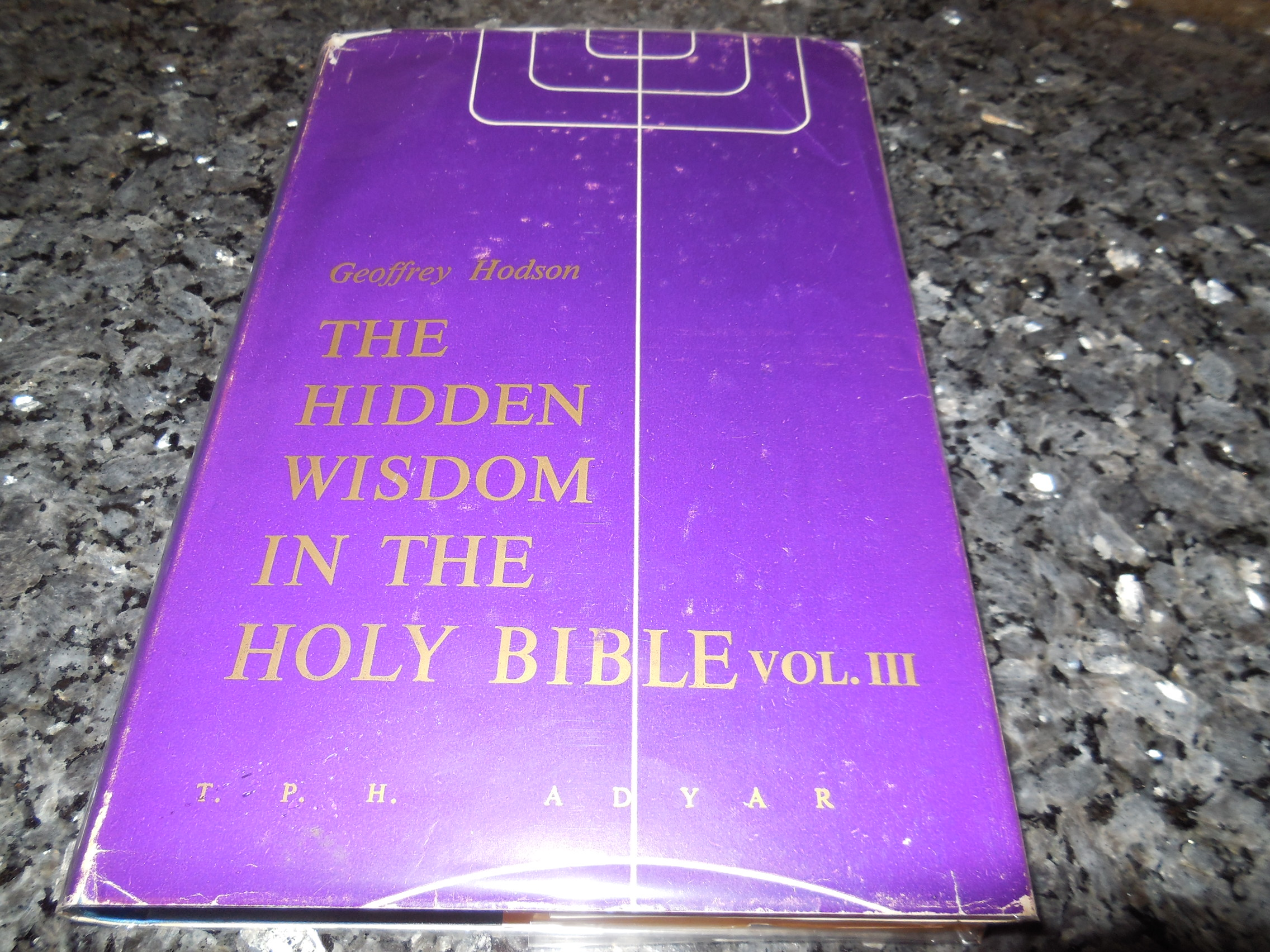 Image for Hidden Wisdom in the Holy Bible: v. 3 (III)
