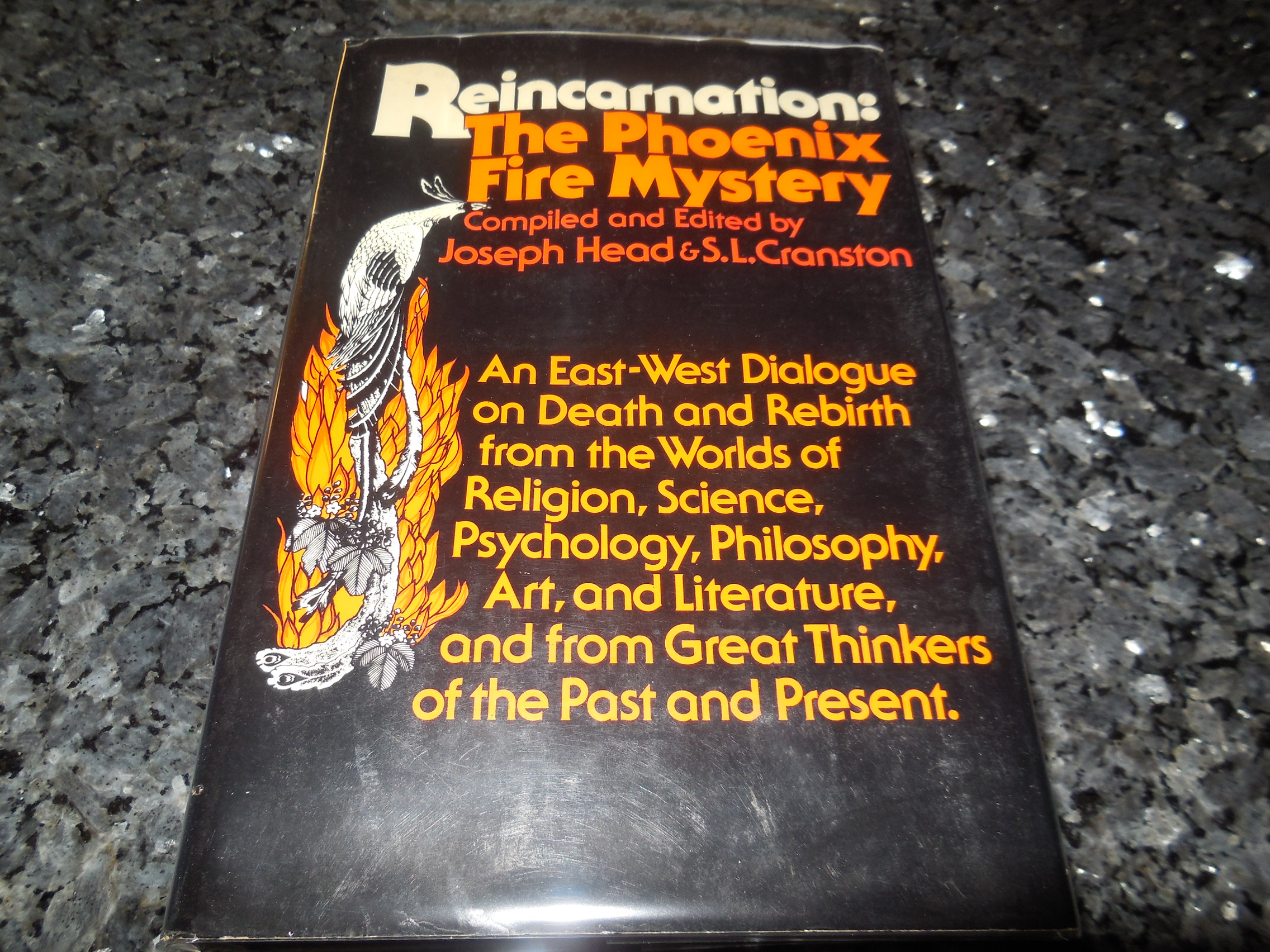 Image for Reincarnation: The Phoenix Fire Mystery