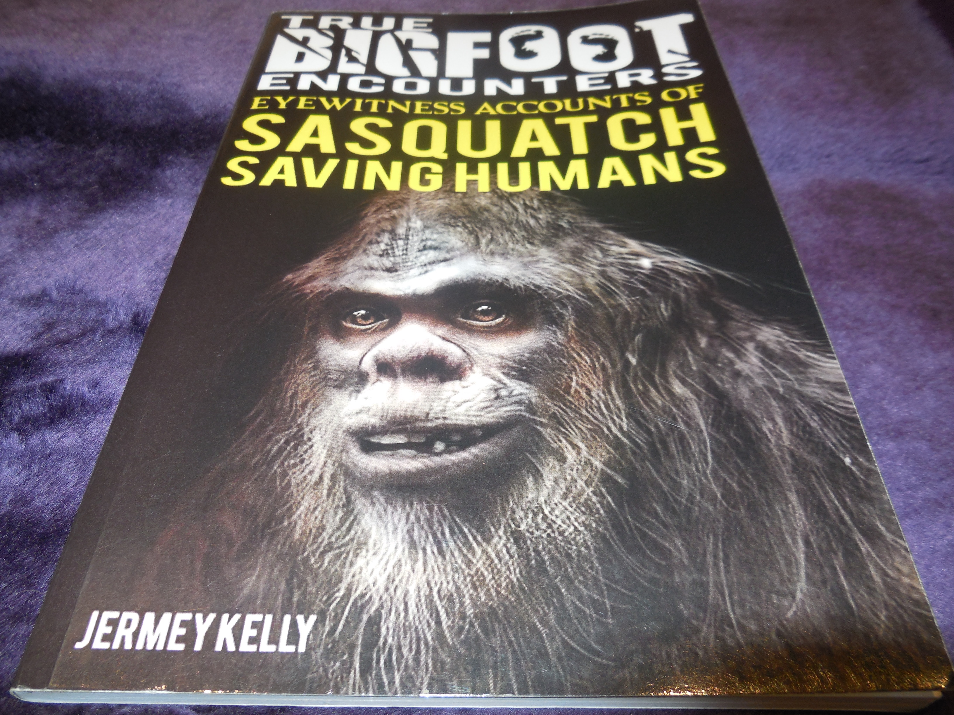 Image for True Bigfoot Encounters - Eyewitness Accounts of Sasquatch Saving Humans