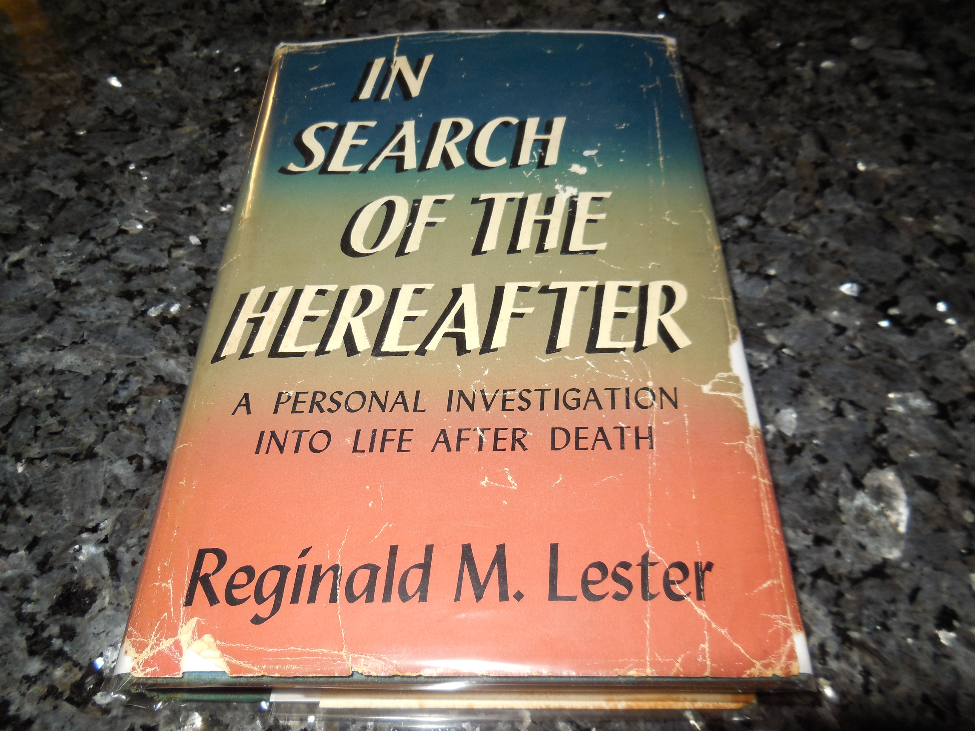 Image for In Search of the Hereafter
