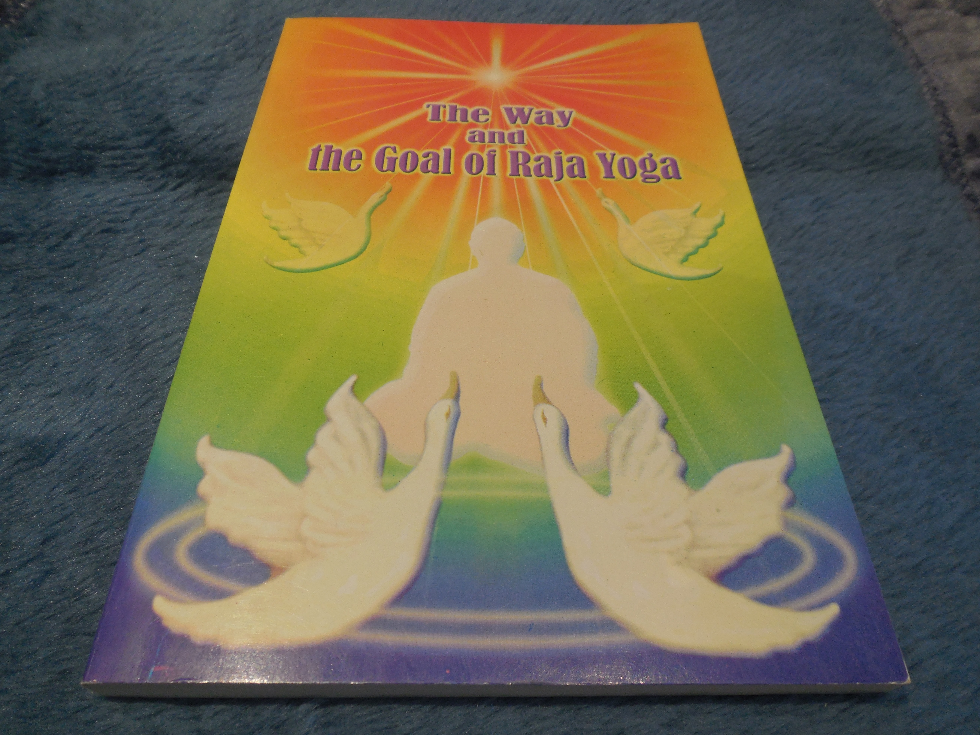 Image for The Way and the  Goal of Raja Yoga