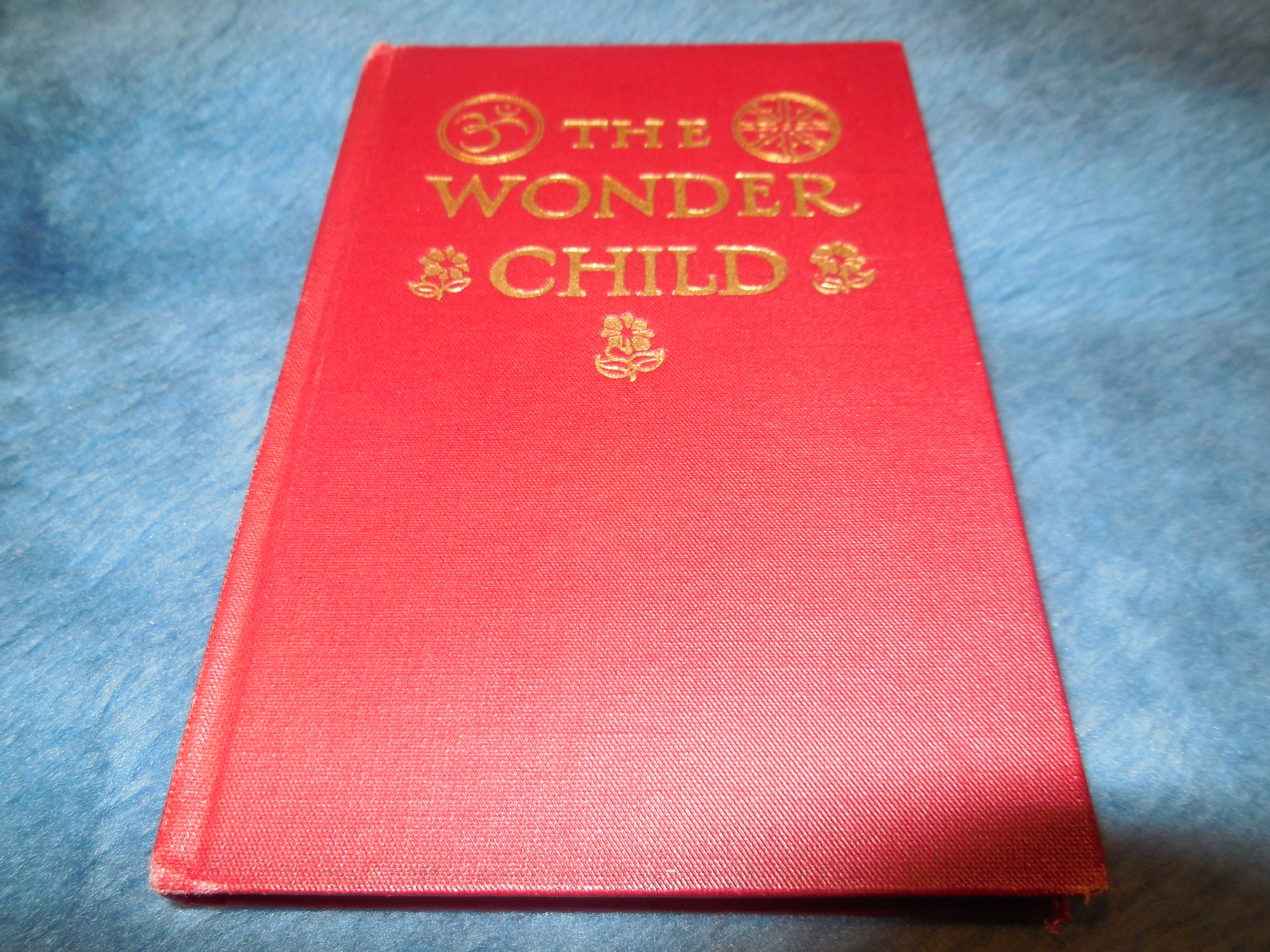 Image for The Wonder Child (A Sequel to Flowers and Gardens)