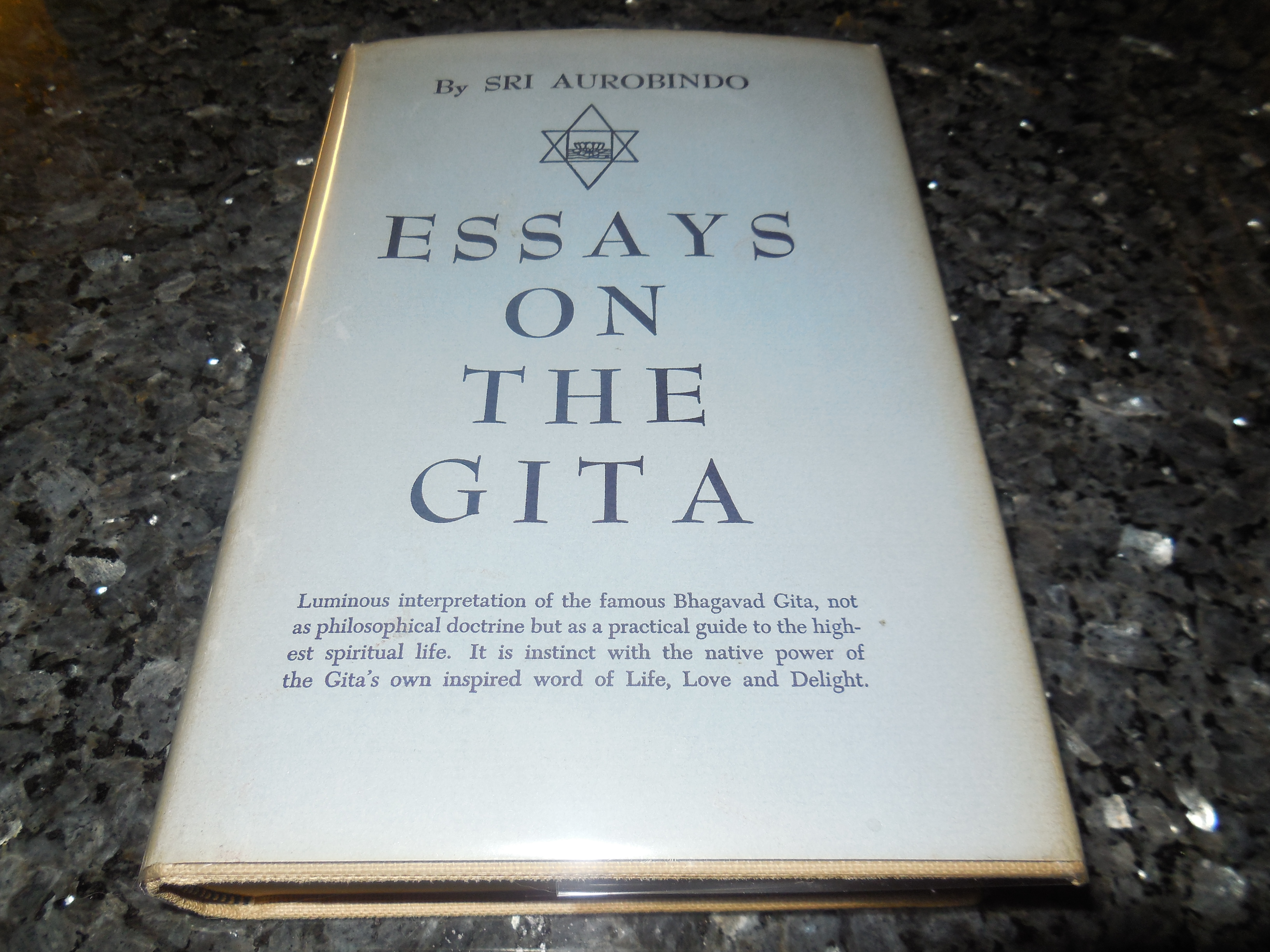 Image for Essays on the Gita