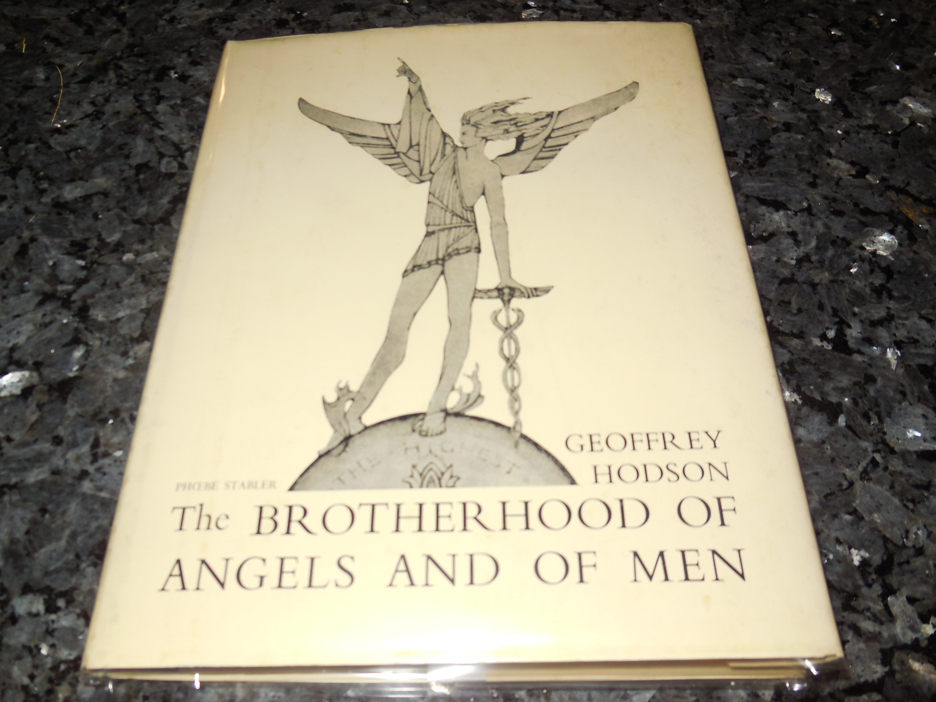 Image for The Brotherhood of Angels and of Men
