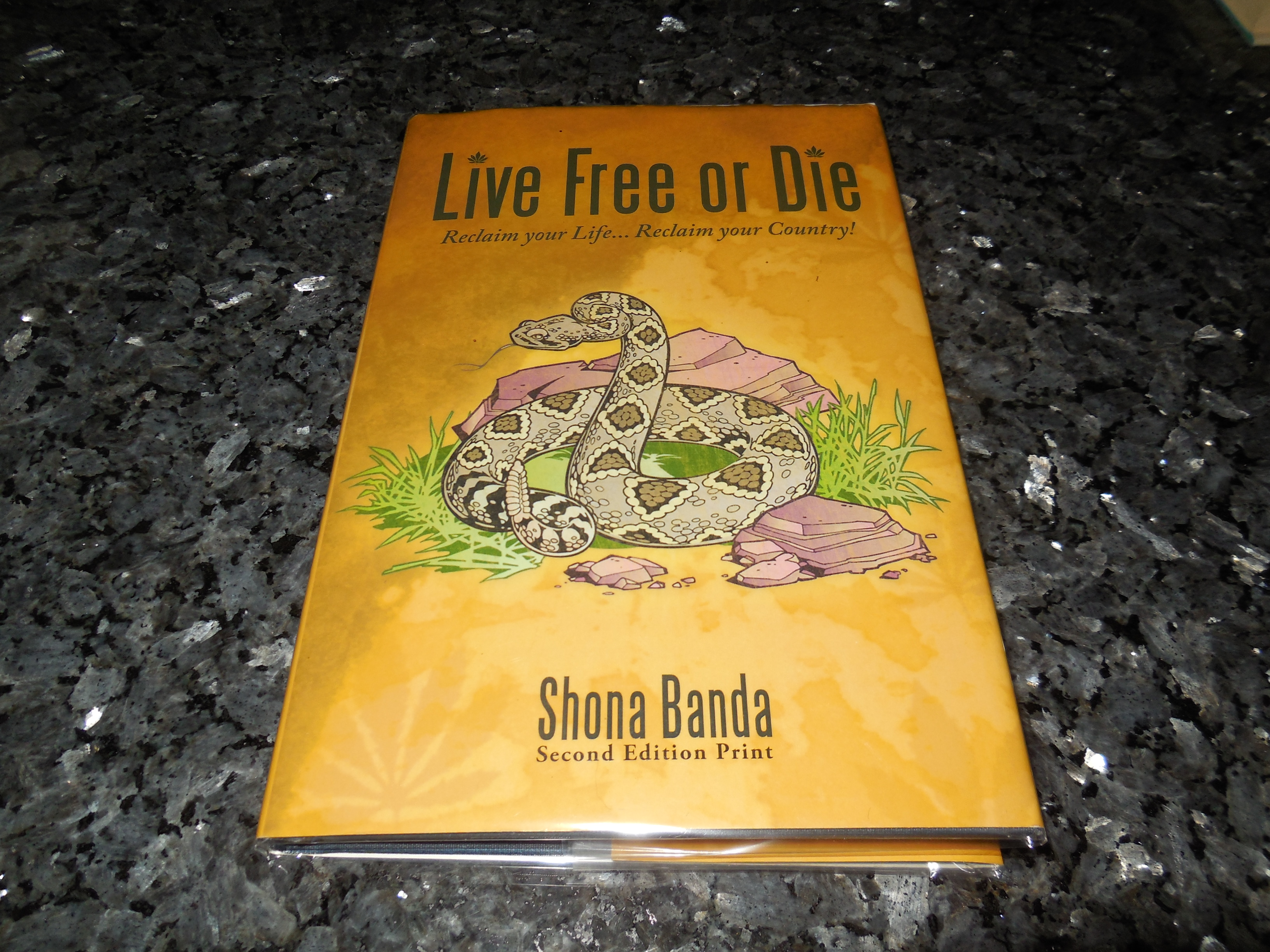 Image for Live Free or Die: Reclaim Your Life... Reclaim Your Country!